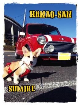 hanaosan1.jpg