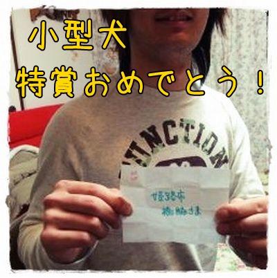 hashiwakisama.jpg