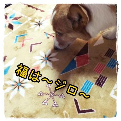 mamejiro21.jpg