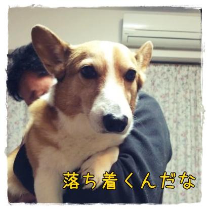 ochitukuwa21.jpg