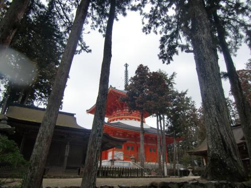 不動堂と根本大塔