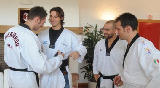 Zlatan_Taekwondo.jpg