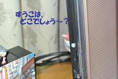 DSC_2399_convert_20141221225336.jpg