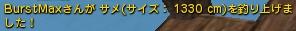 DN 2015-01-18 巨大鮫ログ