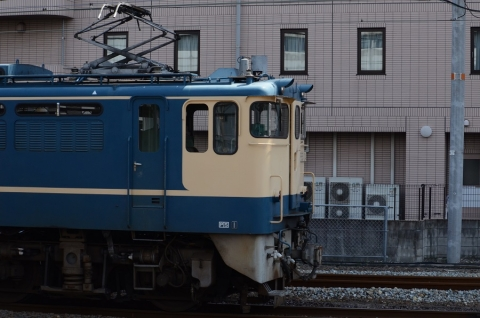 DSC_3608.jpg