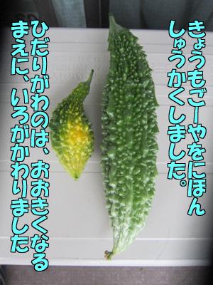 150707-01.jpg