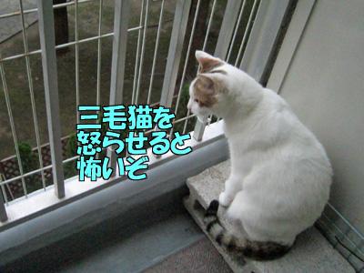 150721-04.jpg