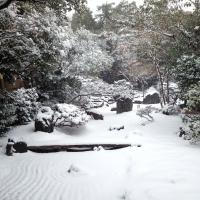 shitenshayuki01