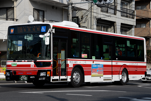 15-A6073-2s.png