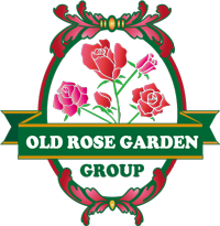 OLD ROSE GARDEN GROUP