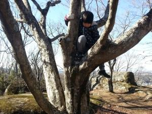 150121木登り
