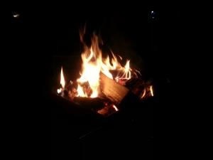 150601たき火