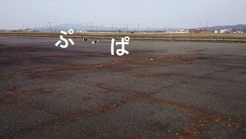 MOV_6822(6).jpg