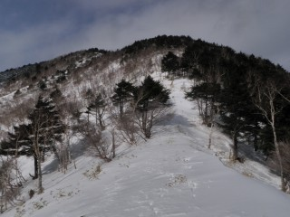 南西尾根から山頂2