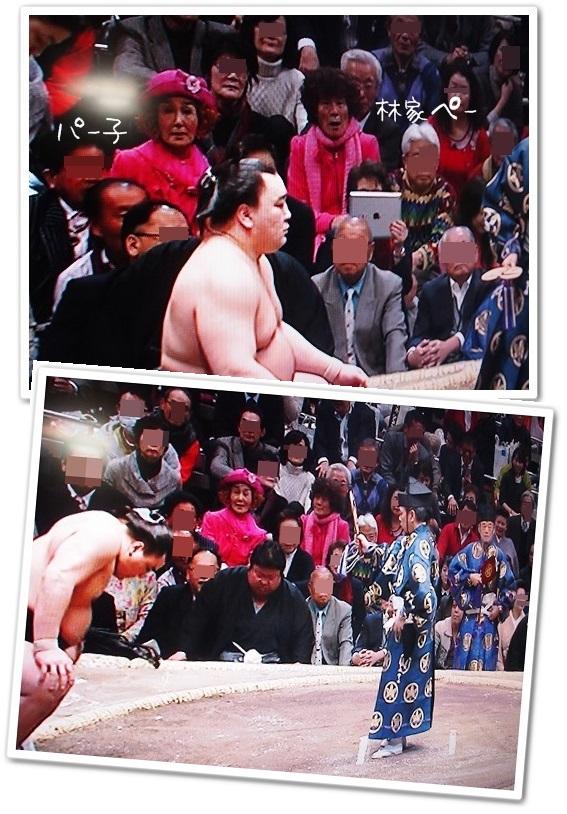 大相撲ママ&有名人探し