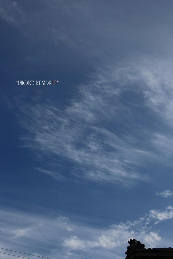 6月最後の曇りのち晴れ
