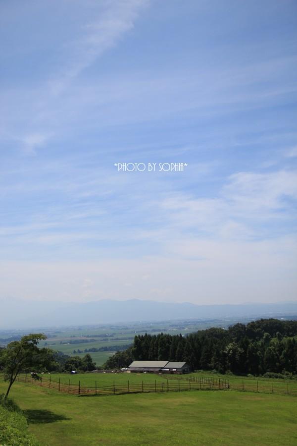 天空の牧場2015