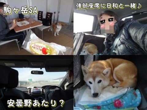 長野に帰る道中