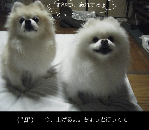 DSCF9090.jpg