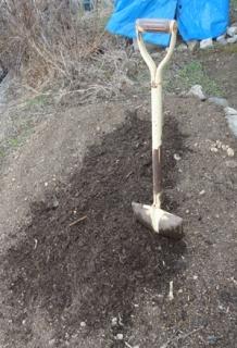 20150418 畑に堆肥をすき込む