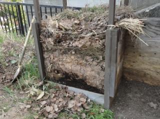 201505 層状になった未攪拌堆肥