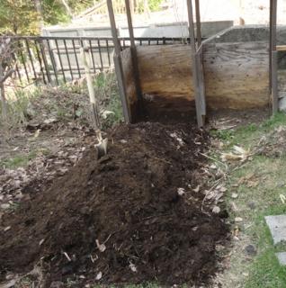 201505 未熟堆肥を掻き出す