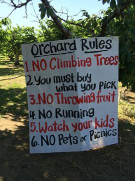 農園ルール