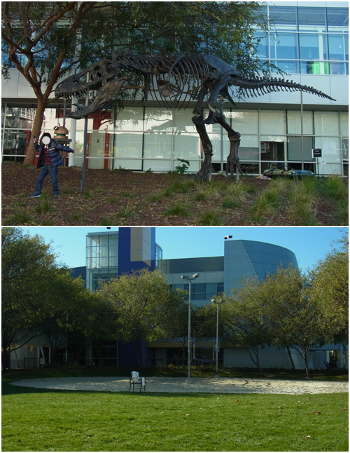 恐竜&ビーチバレーコート