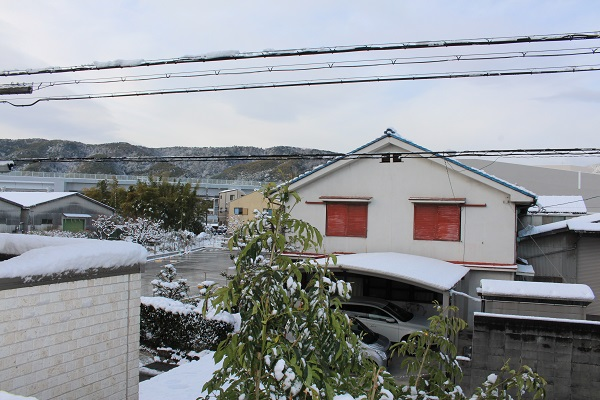 2015.01.03 ぱーる'sコレクション37-7