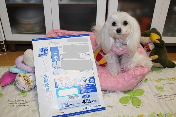 2015.03.17 素敵な体験☆-1