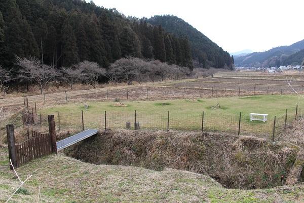 2015.03.18 ちわわん(前編)-9