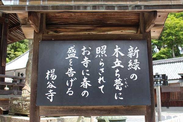 2015.05.13 柳谷観音-4