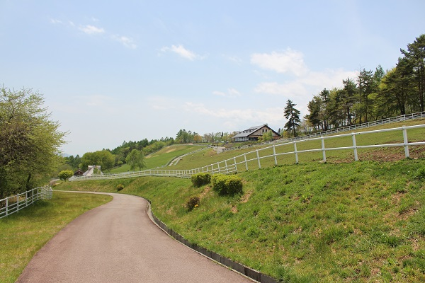 2015.05.27 信州旅行2日目②まきば公園-11