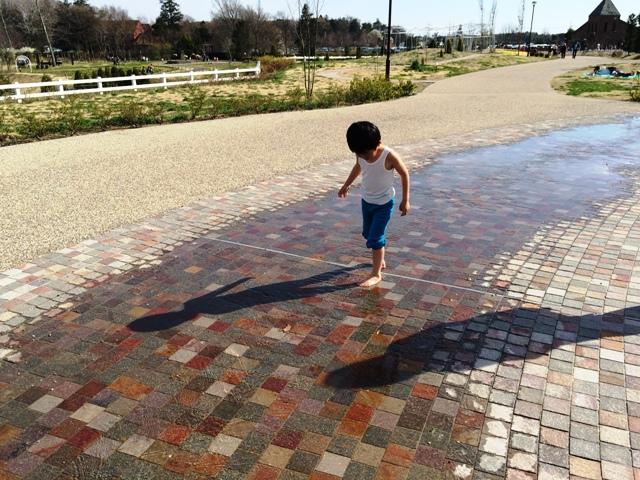 水遊びをする陸ちゃん