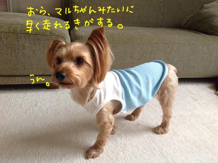 20150713 マルかぁさんお洋服