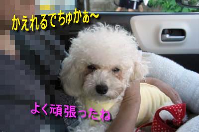 CIMG4637_sc.jpg