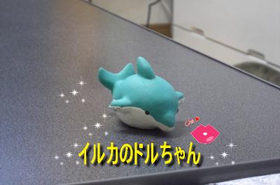 CIMG9925_sc.jpg