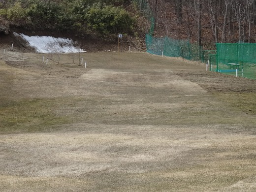 s-糸井の森150329 (1)