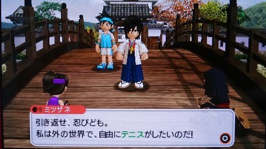みんテニポータブルプレイ3 (17)