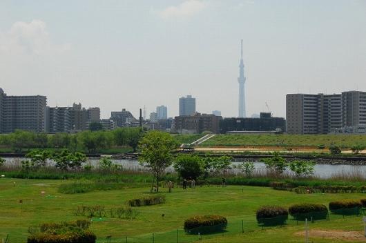 扇河川健康公園PG (1)