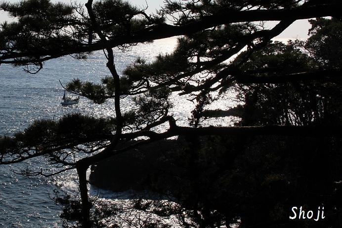 城ケ島海岸散歩道からの眺め