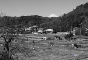 中伊豆町の富士