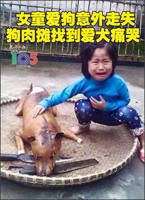 ①ベトナムの5歳少女 行方不明だった愛犬を犬肉店で見つけて号泣