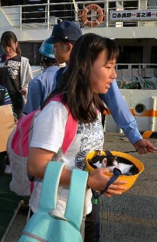 ヘルメットの中の子猫を大事そうに抱え、口永良部島から避難した子ども=29日午後6時8分、鹿児島県屋久島の宮之浦港