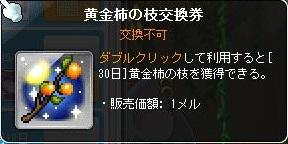 黄金柿の枝