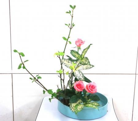 DSC01527盛り花150420
