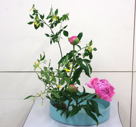 DSC01568-盛り花150525