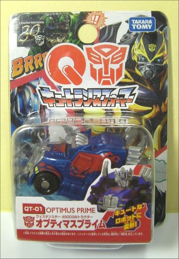 QT-01_SANY0001.jpg