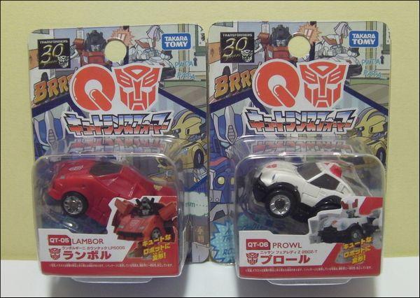 QT-05+06_SANY0001.jpg