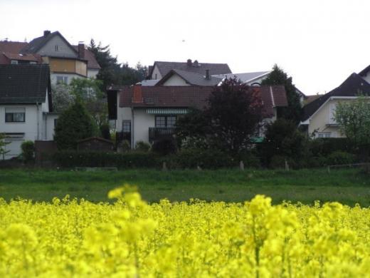 2009-04-30b.jpeg